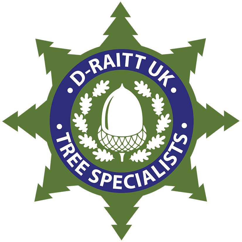 D-Raitt UK Tree Specialist